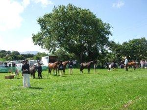 Ballyshannon Agricultural Show